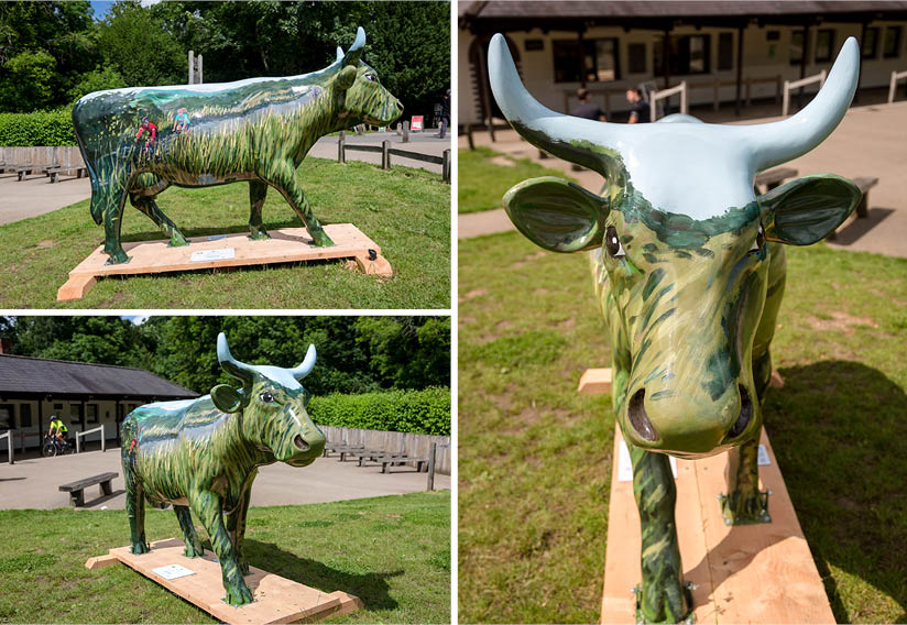 Box Hill painted cow stolen from 2012 Olympics cycling route